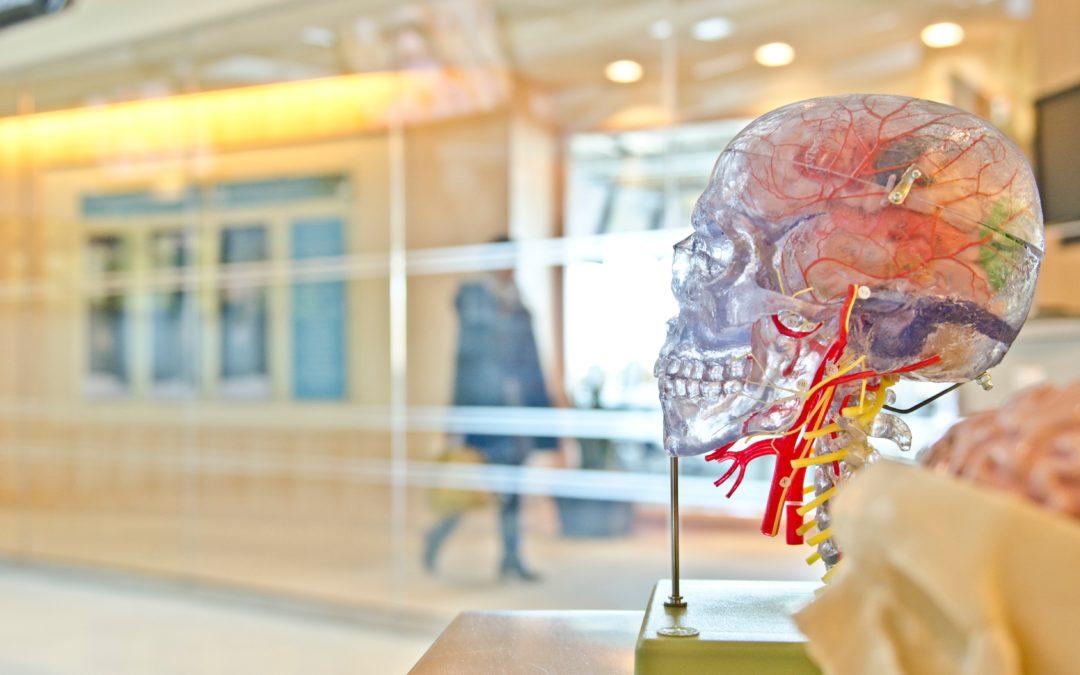 Charla: Terapias que ayudan a madurar el neurodesarrollo.